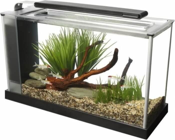 Aquarium Fluval Spec 5 19 litres