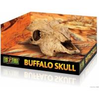 Décoration crâne de Bison Exo-Terra
