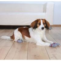 Chaussettes pour chien anti-dérapantes (Par 2)
