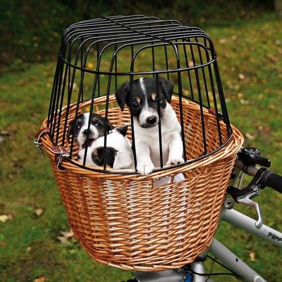 Panier pour vélo en osier