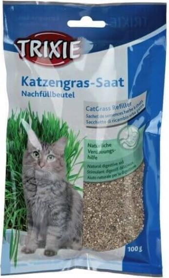 Herbe à chat Tendre