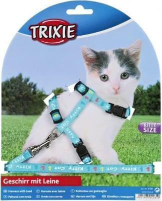 Harnais et laisse pour chatons, nylon