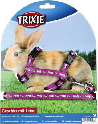 Harnais réglable pour lapin avec laisse