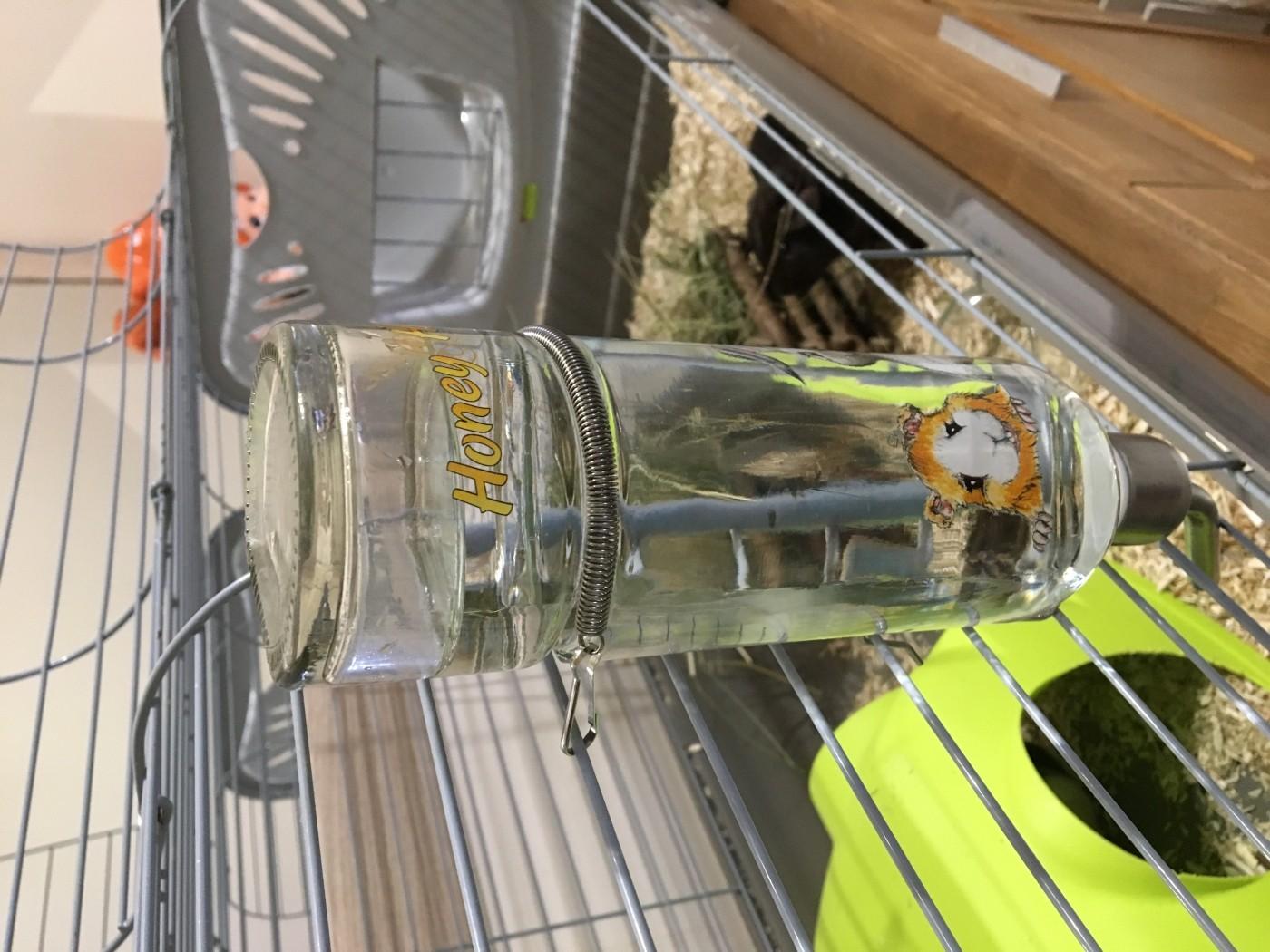 Trixie Honey And Hopper Bottiglia di Vetro per Acqua