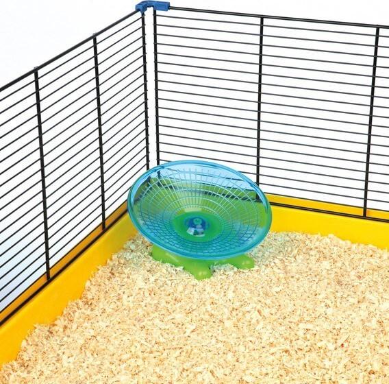 Disque d'exercice pour hamster et souris