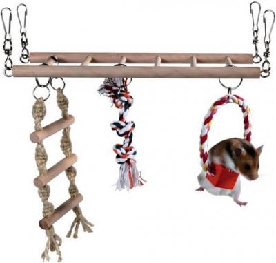 Echelle suspendue avec jeux pour hamster