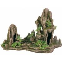 Escalier de roche avec plantes et cave