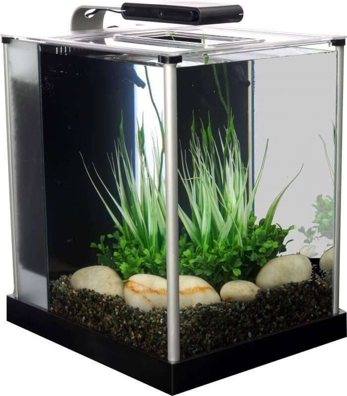 aquarium fluval spec 3 10 litres aquarium et meuble. Black Bedroom Furniture Sets. Home Design Ideas