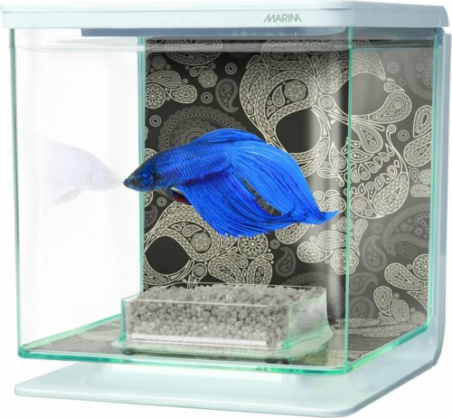 Aquarium Betta Kit Décor Tête de Mort