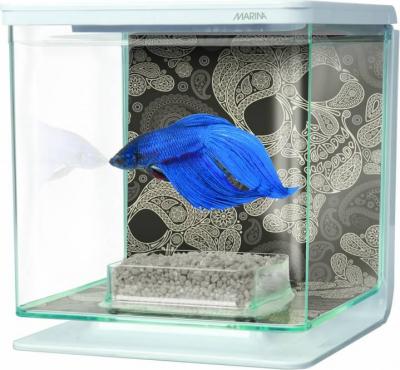 Aquarium Betta Kit Décor Tête de Mort