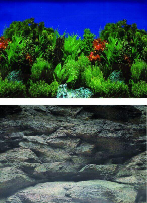 Póster de fondo High Plants/Rock