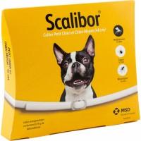 SCALIBOR Collier antiparasites pour chien