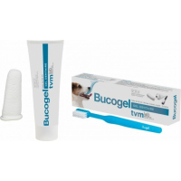 Dentifrice Bucogel