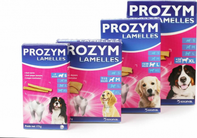 PROZYM Lamelles pour hygiène bucco-dentaire