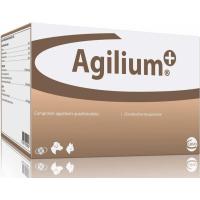 Nahrungsergänzungsmittel Agilium - Unterstützung des Gelenkstoffwechsel