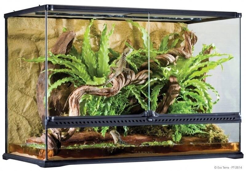 Terrarium extra plat 90x45x30cm_2