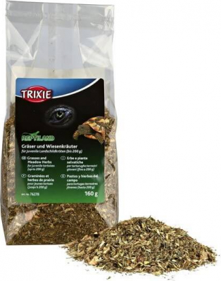 Graminées et herbes de prairie pour tortues