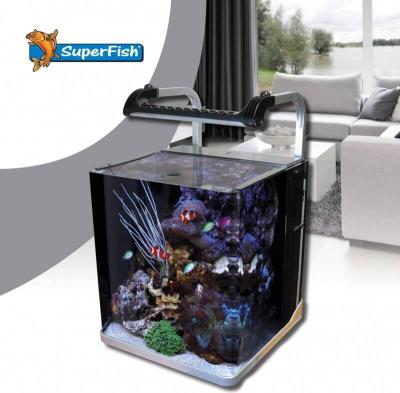 Aquarium IQ 40