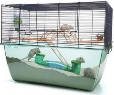 Cage gerbille/hamster  habitat XL