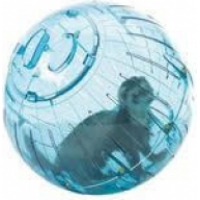 Boule d'exercice Rongeur Runner