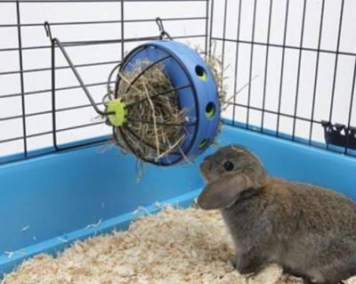 """Distributeur de foin """"Bunny Toy"""""""