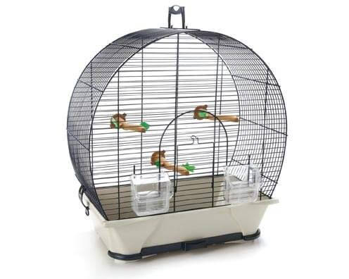 Evelyne bird cage small bird cages for Petite cage a oiseaux decorative