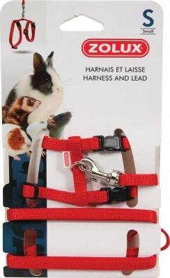 Kit harnais petits mammifères Casual rouge