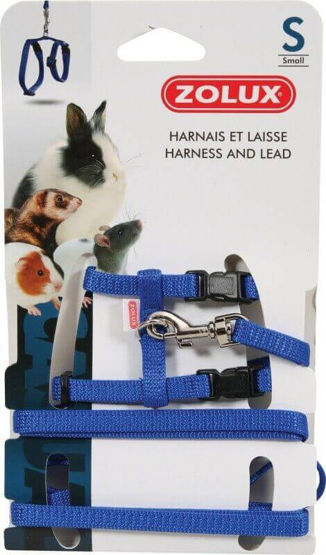 Kit harnais petits mammifères Casual bleu