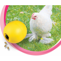 Chicken trough feeders