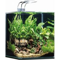 Aquarium NanoCube Complete Plus LED 20L et 60 L