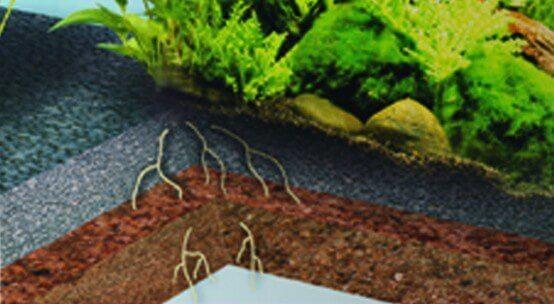 Nano deponit mix substrat sp cial pour mini aquariums for Substrat pour aquarium