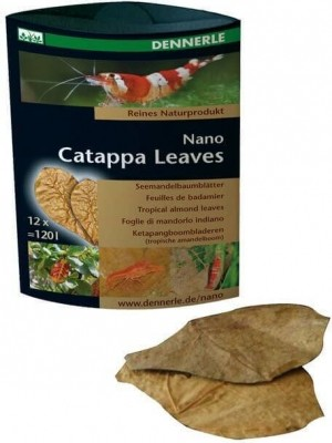 Nano Catappa Leaves - Natural Water Conditioning and Feed Supplement