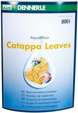 Catappa Leaves - Seemandelbaumblätter –