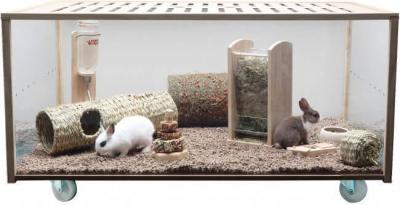 Habitat vision claire pour rongeurs Moving Home de 80 à 120cm