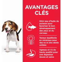 HILL'S Science Plan Canine Puppy Medium croquettes pour chiot de taille moyenne à l'agneau