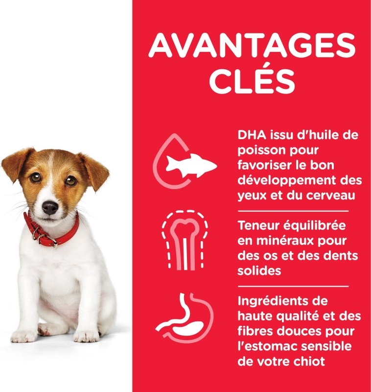 HILL'S Science Plan Canine Puppy Small & Mini - kip