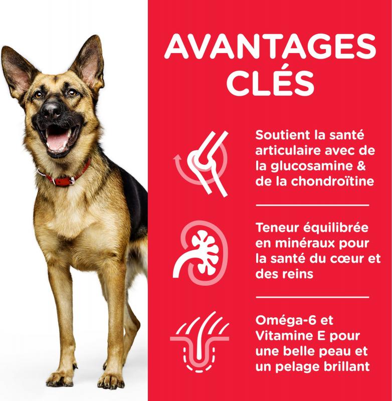 HILL'S Science Plan Canine Mature Adult 6+ croquettes pour chien senior de grande taille au poulet