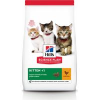 HILL'S Science Plan Kitten Healthy Development con Pollo per gattini