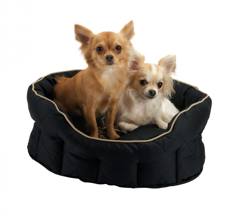corbeille pour chien royal dog panier et corbeille. Black Bedroom Furniture Sets. Home Design Ideas