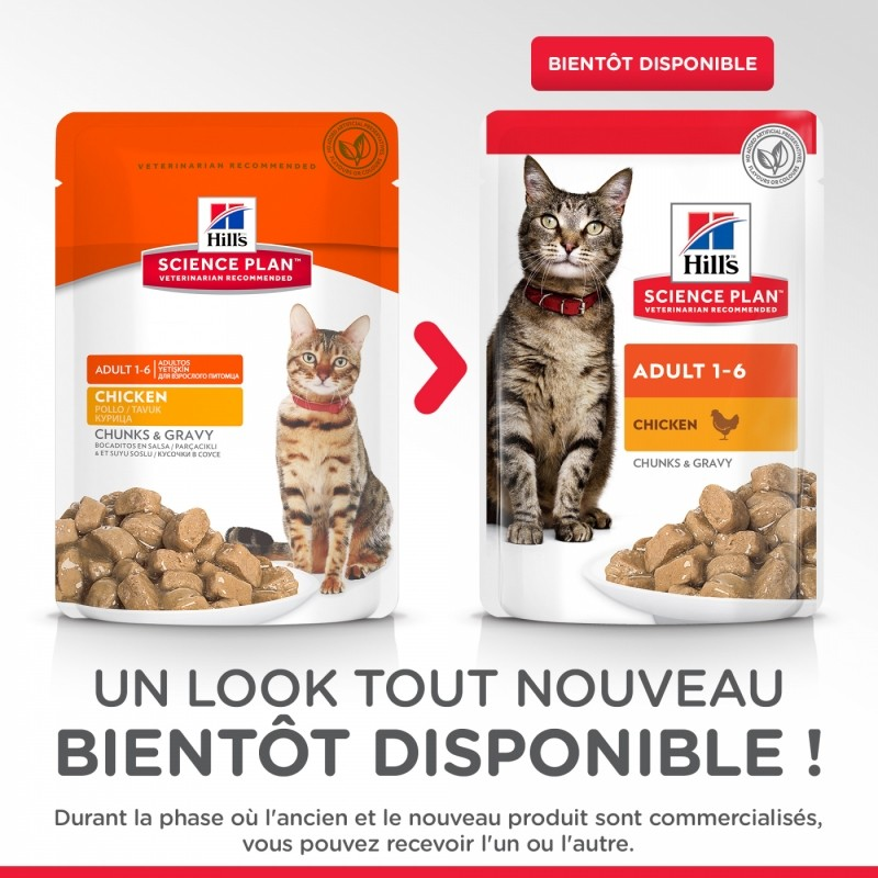PACK de 12 Pâtées HILL'S Science Plan Adult au Poulet pour chat adulte