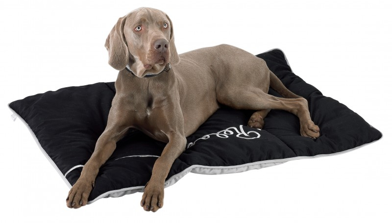 tapis pour chien relax coussin et tapis. Black Bedroom Furniture Sets. Home Design Ideas