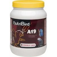 NutriBird A19 für die Handaufzucht von Aras, eclectus und Graupapageien, Aras, Edelpapagei oder Gabun