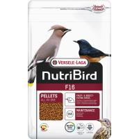 Oiseaux nectarivores et frugivores