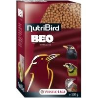 NutriBird BEO Komplet für Amseln und andere Insektenfresser