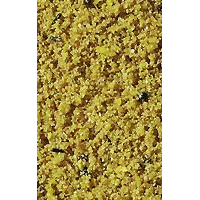 Versele Laga Orlux Gold Patè all'uovo per canarini