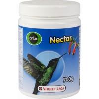 Pássaros nectarívoros e frugívoros