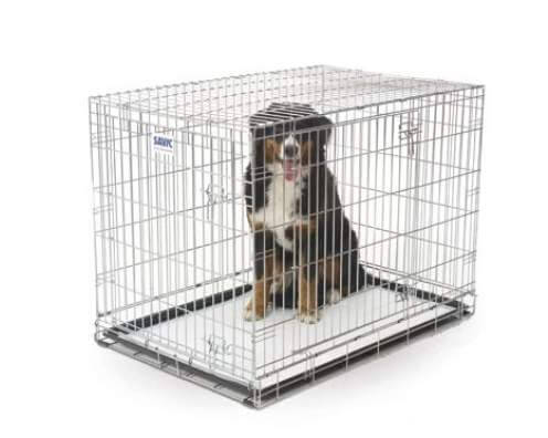 Comfort pads tapis ducateurs pour chien tapis ducateur - Tapis educateur proprete pour chien ...