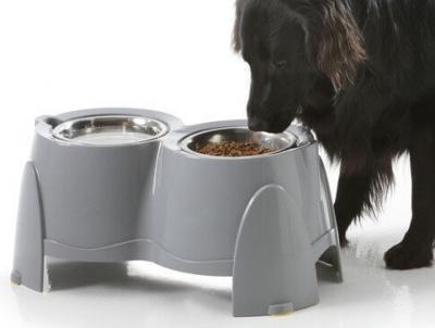 ERGO FEEDER - Futternapf für Hunde die an Arthritis leiden