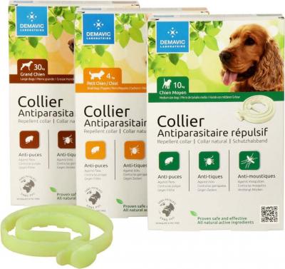 Collar insecticida para perro