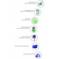 Cunipic Vetline Intestinal Formule spéciale renforcement du système digestif pour furets